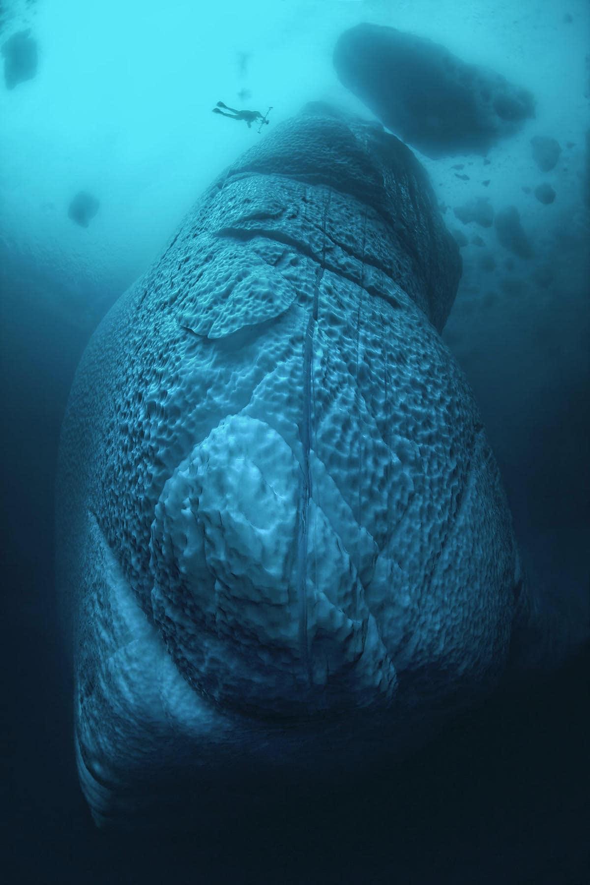 iceberg-underwater-tobias-friedrich-4