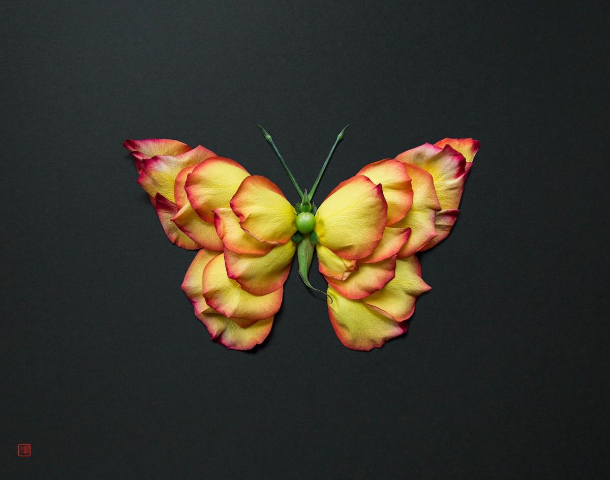 Flower designing of Raku Inoue