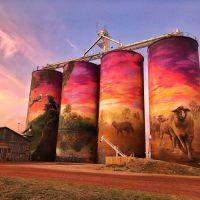 Western Australia's Public Silo Trail