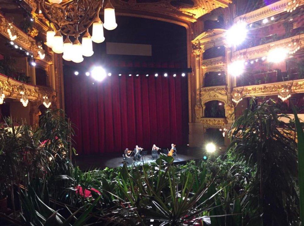 concert-for-plants-barcelona-gran-teatre-liceu-opera-house-7