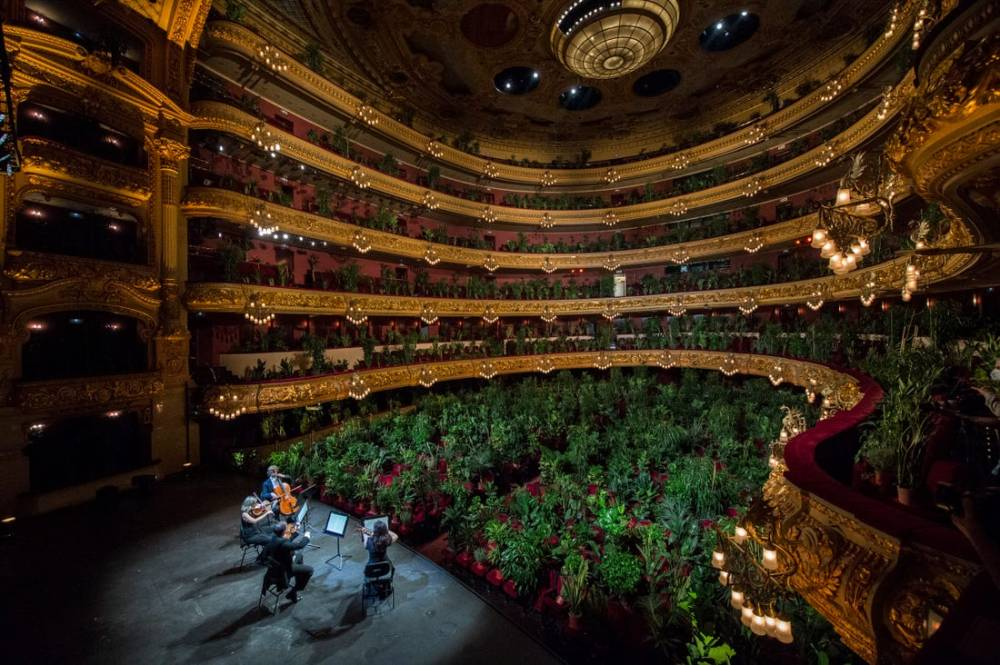 concert-for-plants-barcelona-gran-teatre-liceu-opera-house-8