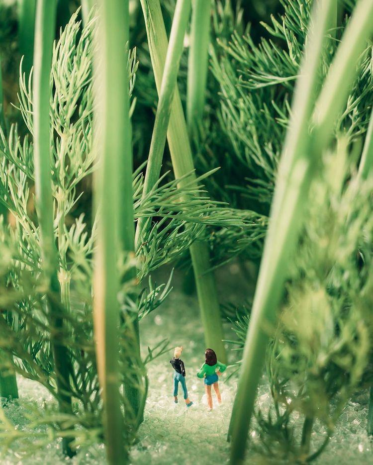 indoor-nature-photography-erin-sullivan-14