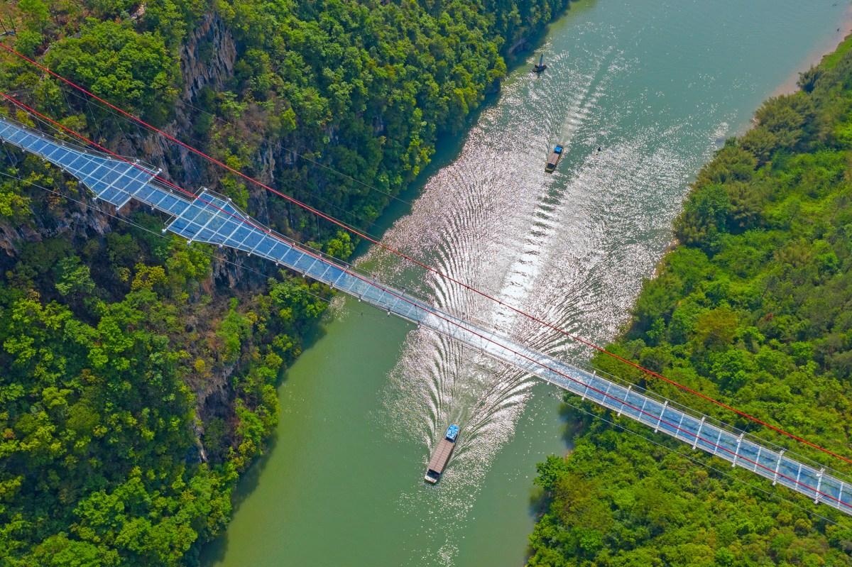 worlds-longest-glass-bridge-moss-and-fog-1.5