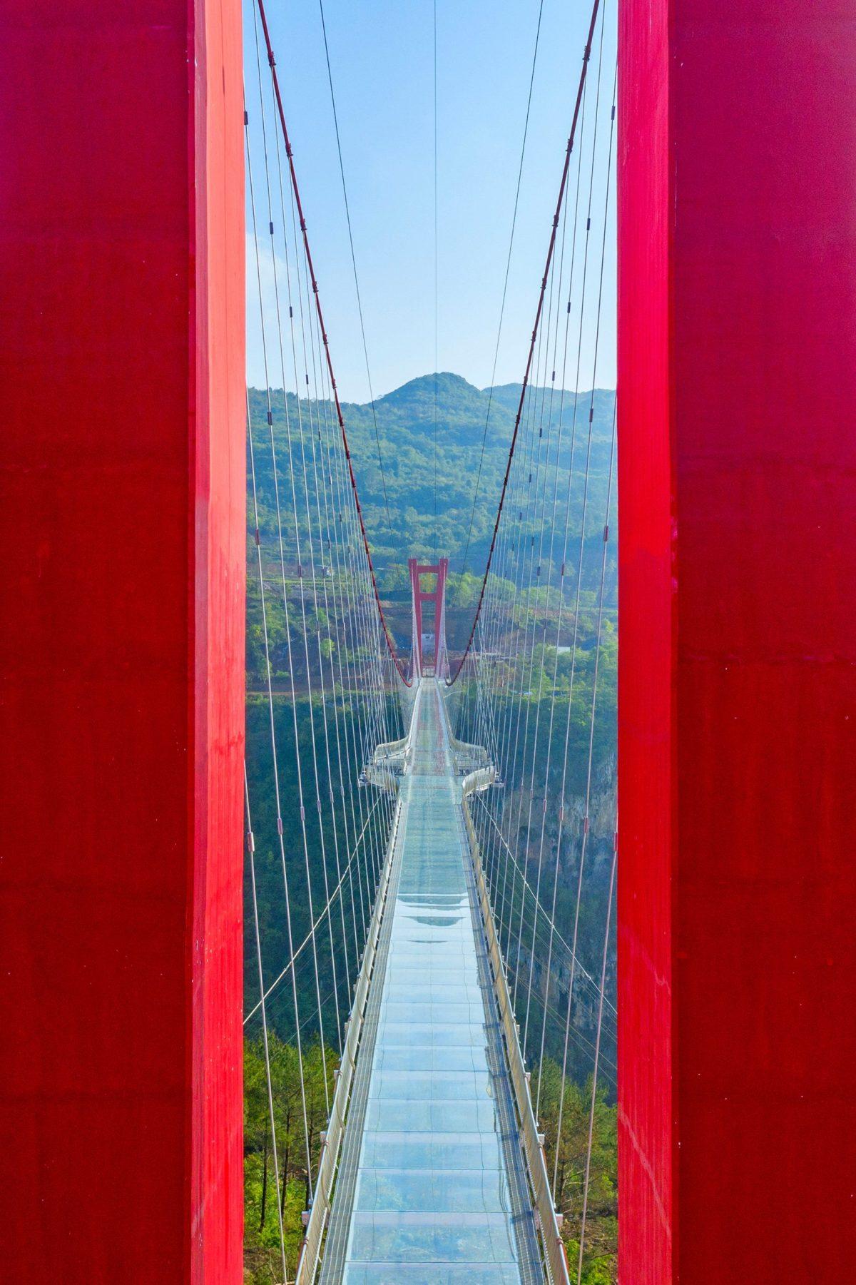 worlds-longest-glass-bridge-moss-and-fog-8