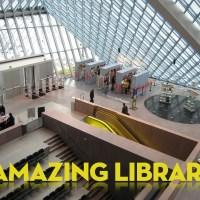 5 Amazing Libraries