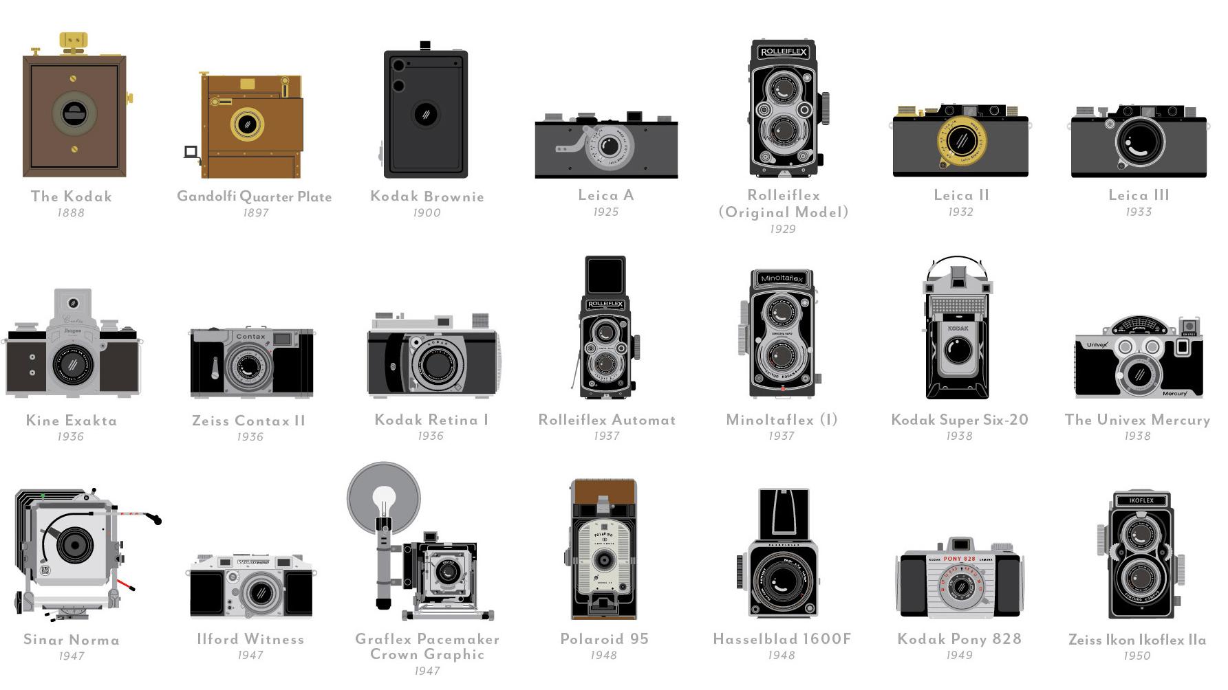 Visual Compendium Of Cameras Moss And Fog