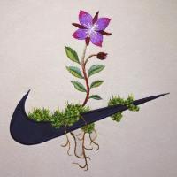 Sports Logos Turned Organic