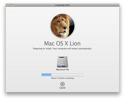 Lion instal
