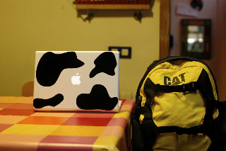 macbook cow 1