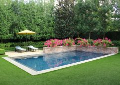 Poolside bougainvillea with artificial turf.