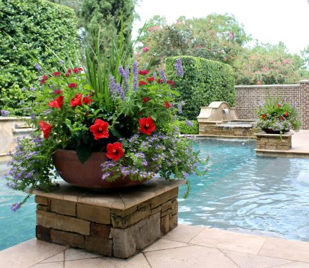 Summer Poolside Planters