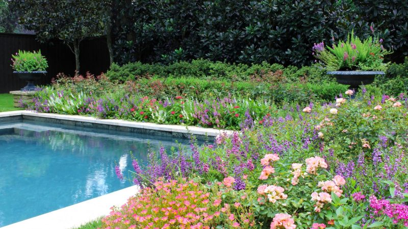 The Houston Gardener – Fall 2017