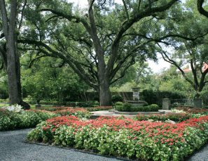 Longfellow Gardens - Seasonal Color 2