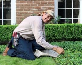 Pedro Pulling Weeds