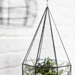 Parker Hanging Terrarium Set Moss Manor