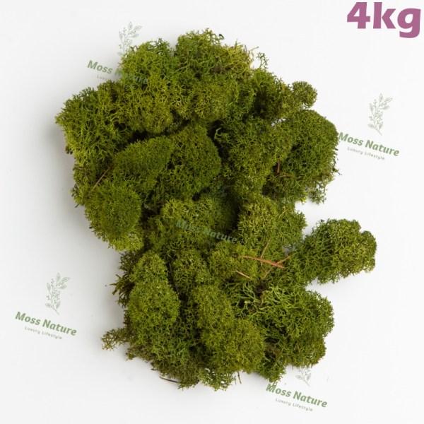 скандинаский мох 4кг11