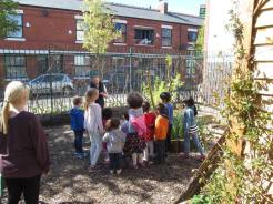learning about the willow tree at the second little diggers workshop