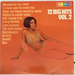 12 Big Hits Volume 2 LP Vinyl Record www.mossymart.com