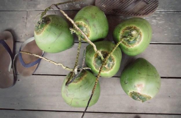 11coconuts