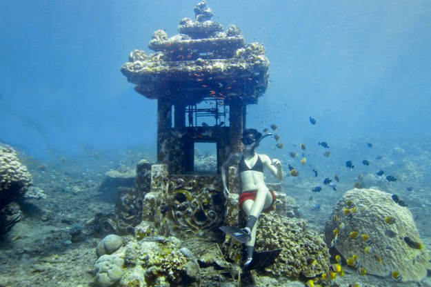 freediving-post1-1