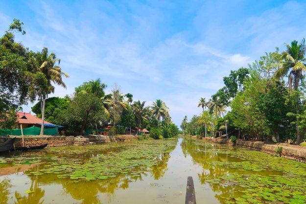 Kumarakom-Kerala-best places in india