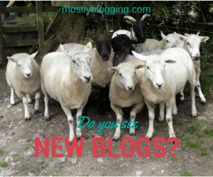 Blogging Networking Opportunities