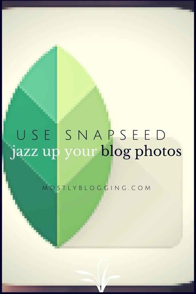 #Photography Snapseed Filters