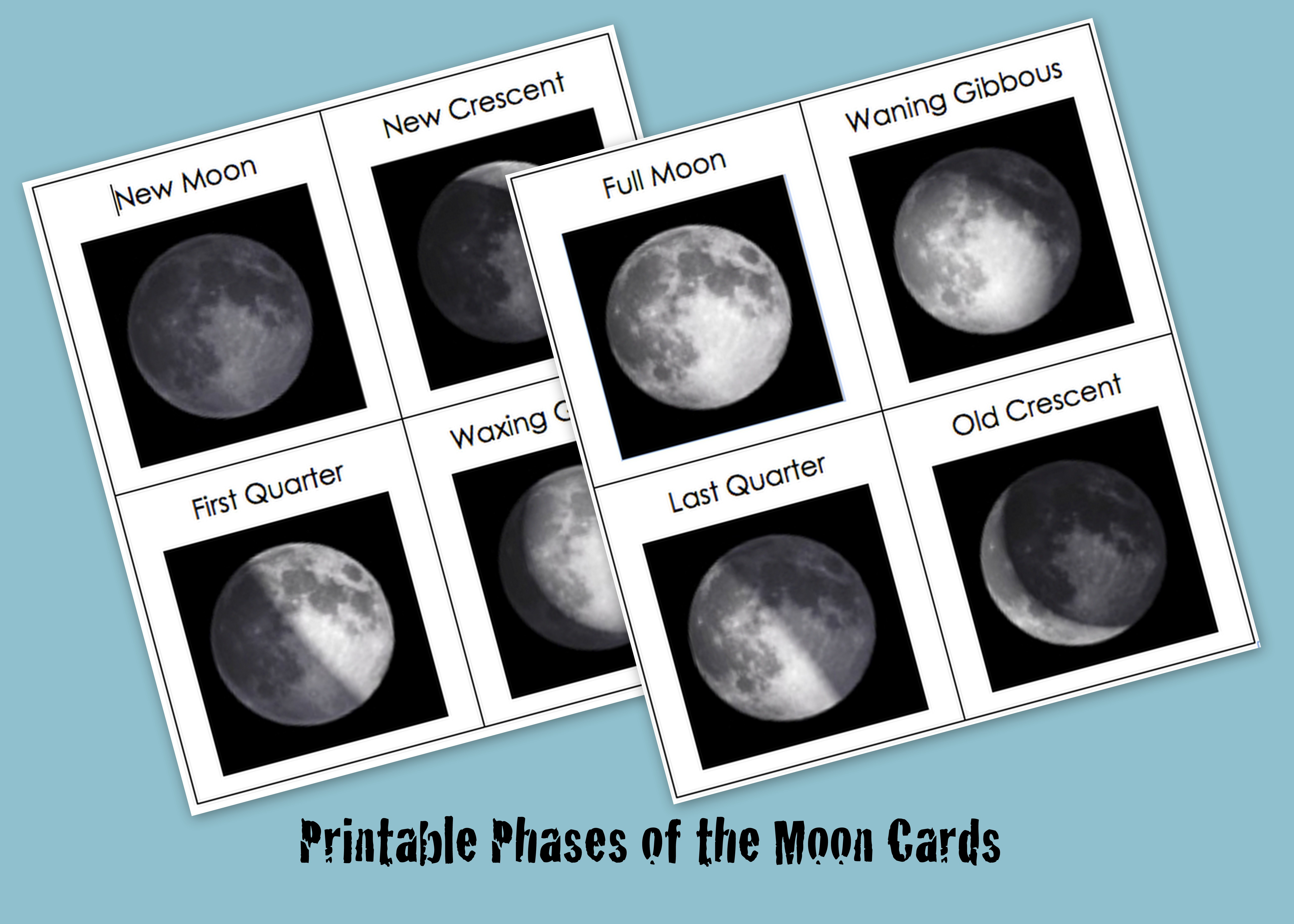 Amazing Phases Of The Moon Printable