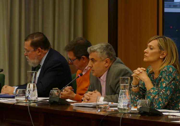 Ciudadanos acusa al PSOE de camuflar la remunicipalización de Cofely