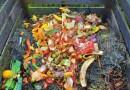 El compost es una excelente forma de reutilizar los desechos orgánicos que producen los hogares