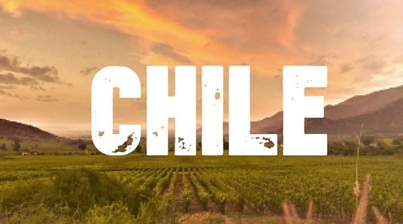 James Suckling acaba de revelar sus 100 vinos chilenos favoritos