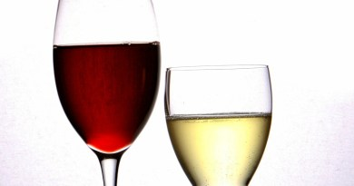 Para este año 2020 se vislumbran una serie de nuevas tendencias en el mundo del vino