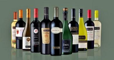 La viña Santa Ema acaba de lanzar al mercado nacional una nueva plataforma de ventas: su propia tienda en línea, con despacho a todo Chile