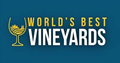 Este lunes se dio a conocer el ranking internacional World's Best Vineyards 2020, donde siete viñas chilenas destacaron en el top 50.