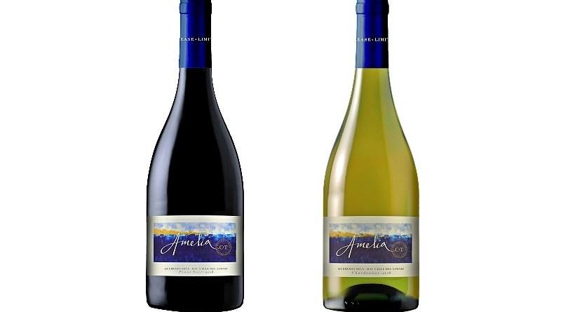 La marca de vinos Amelia decidió trasladar su producción de vinos al Valle de Limarí y desde entonces destacan por su frescor y mineralidad.