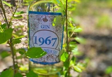 Como una forma de celebrar el aniversario 53° de Supermercado Diez, el destilador Juan Pablo Izquierdo elaboró un exclusivo Gin nacional llamado 1967. Este destilado fue producido y embotellado especialmente para la familia Diez.