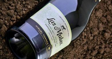 Este vino es el primer espumante Extra Brut que se integra al portafolio Las Mulas, la línea orgánica de la viña Miguel Torres, que tiene su origen en 2010. Se trata de un blanc de noirs elaborado 100% de cepa país, cultivada por pequeños productores de la provincia de Curicó.