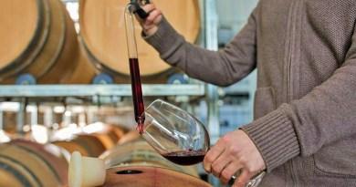 Los vinos no se hacen solos, sino que son el resultado del trabajo del enólogo, cuyo rol es fundamental en todo el proceso de elaboración.