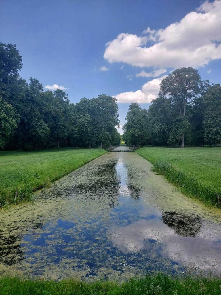 Kanał w parku otoczony zielenią.