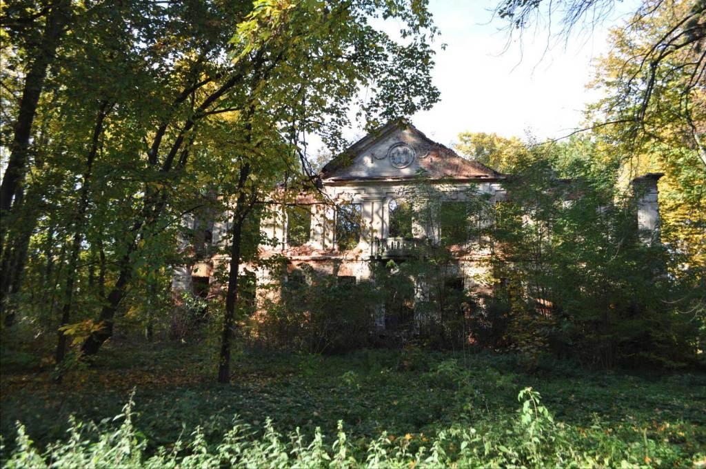ruiny w leśno-parkowym otoczeniu