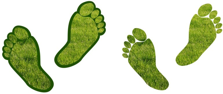 green grass footprints carbon footprint