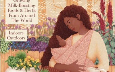 Lockdown-Inspired Book for Breastfeeding Moms and Families