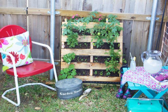 gardening, vertical gardening, creative gardening