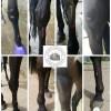 Horses leg