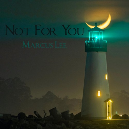 Not For You Marcus Lee Cover Art