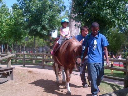 Bugz horses 2