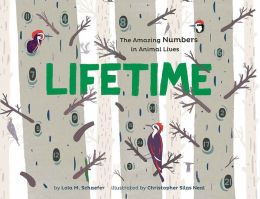Lifetime cover image