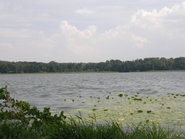 Lake seen from the city