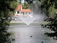 Small pond in the city centre