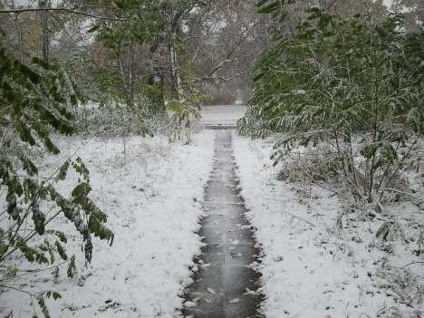 5 cm of pure white snow